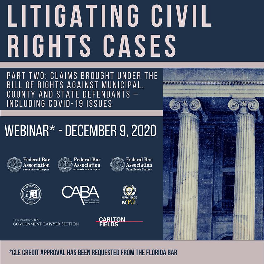 Webinar: Litigating Civil Rights Cases, Part 2