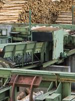 Industry_Wood.jpg