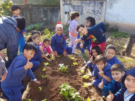 PREFEITURA FORTALECE EDUCAÇÃO AMBIENTAL NAS ESCOLAS MUNICIPAIS