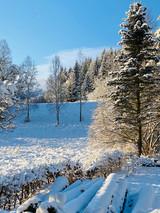 Svah na bobování_Zima na Žabaštejně