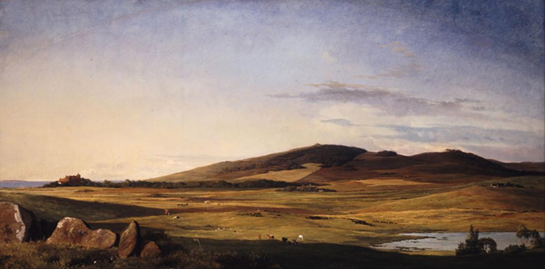 Zealand Landscape 02
