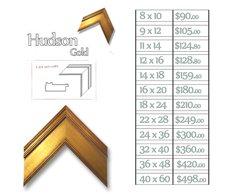 Time Capsule Framing Hudson Gold Frame and Price