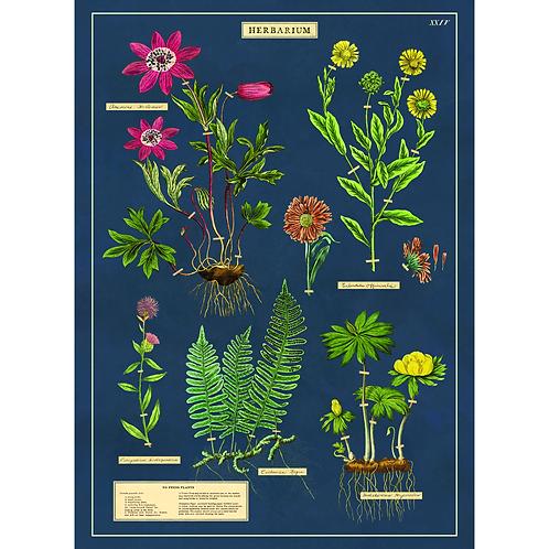 Decorative Italian Papers - Herbarium