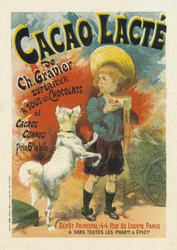 Cacao Lacte