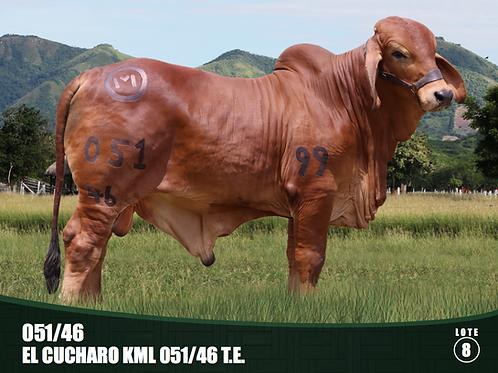 051/ 46 EL CUCHARO KML 051 / 46 T.E