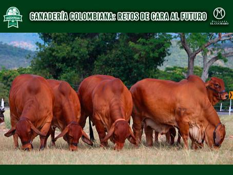 GANADERÍA COLOMBIANA: RETOS DE CARA AL FUTURO