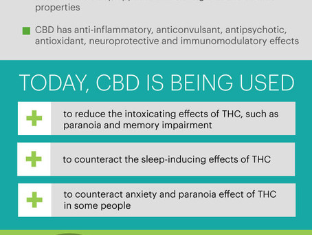 Your Guide to CBD