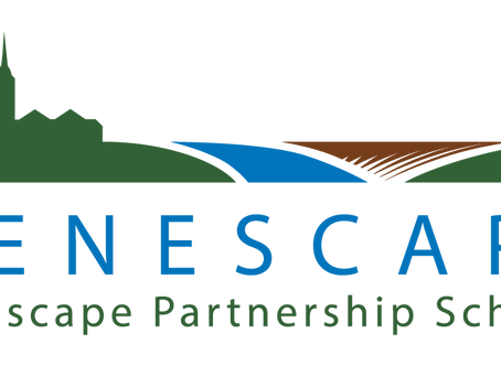 The NVAT & the Nenescape project