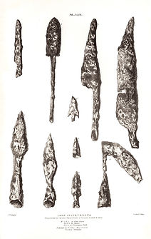 P43. Iron instruments in castor.jpg