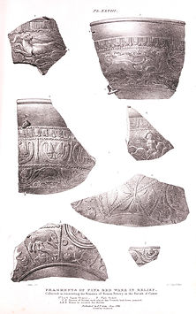 P48.Fragments of fine red ware.jpg