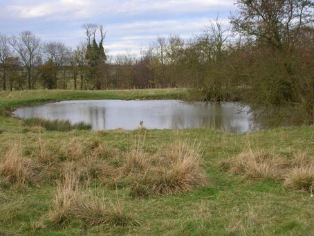 Ponds in the early East Midland Landscape