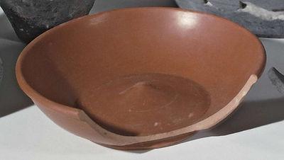 nene-valley-colour-coat-bowl-stonea-bm.jpg