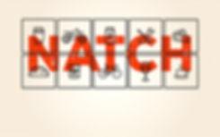 Natch Icons1.2.jpg