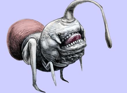 Bestiář ilustrace 5