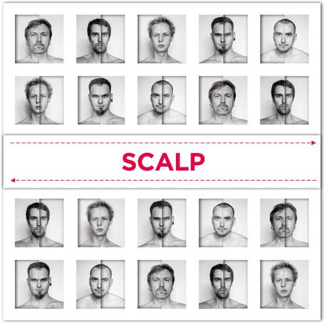 SCALP_01.jpg
