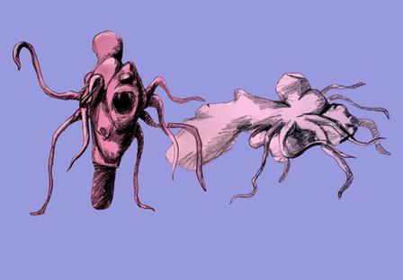 Bestiář ilustrace 2