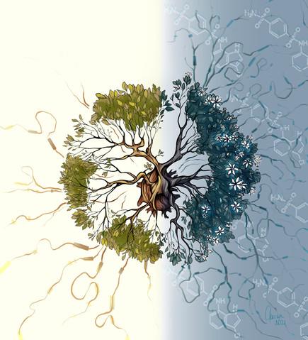 Pharmacologic modulation of RNA splicing enhances anti-tumor immunity