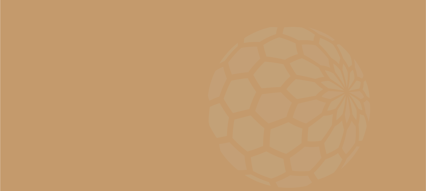 tanhoneycomb