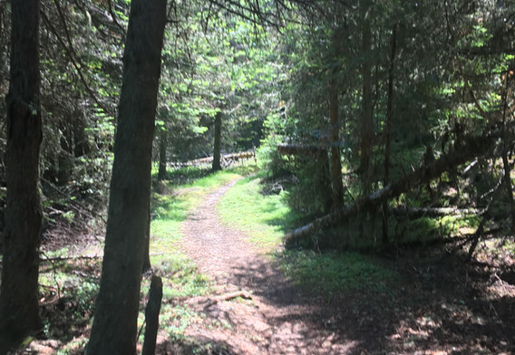 Trail to light house