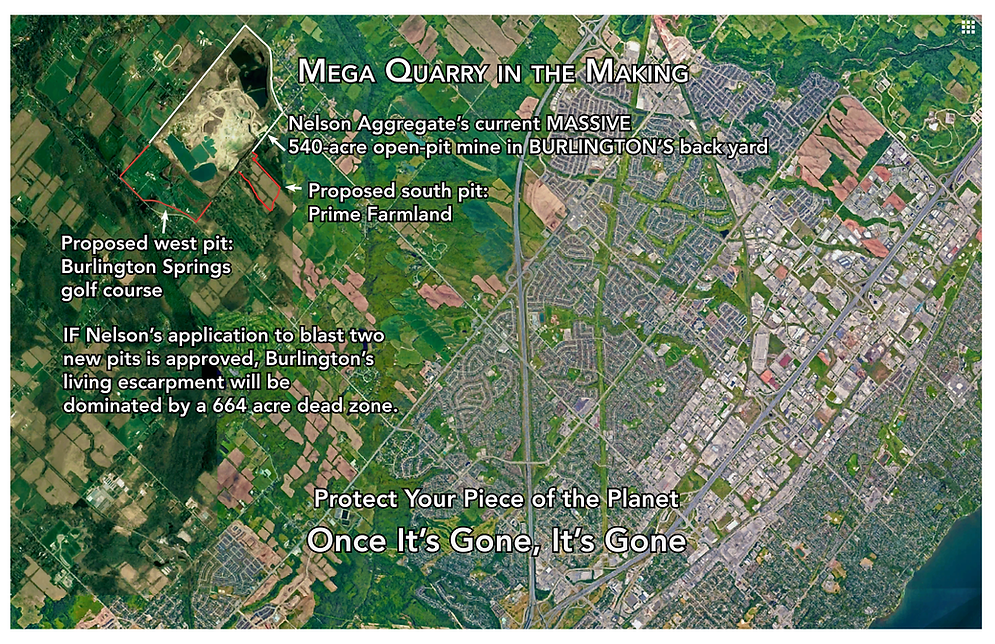 NelsonPit_satellite_cityview-V2.png