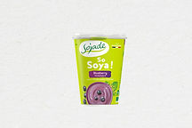 Altenative Yogourt Bleuet   Blueberry Soya Yogurt Alternative 400g