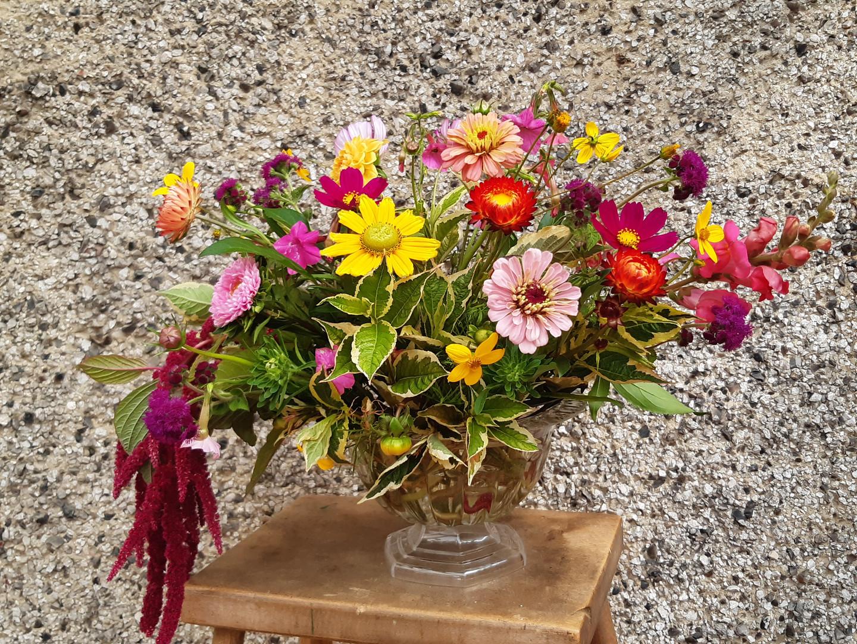 Vibrant British Flower Compote Arrangeme