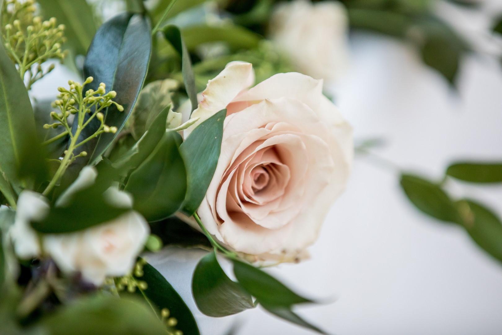 Nude bridal rose