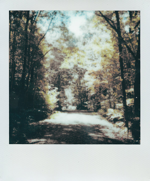 Fall 004 polaroid frame.jpg