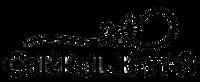 cb logo 2009.png