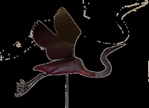 Elegance of the Egret