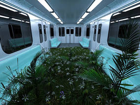 Botanical train.mp4