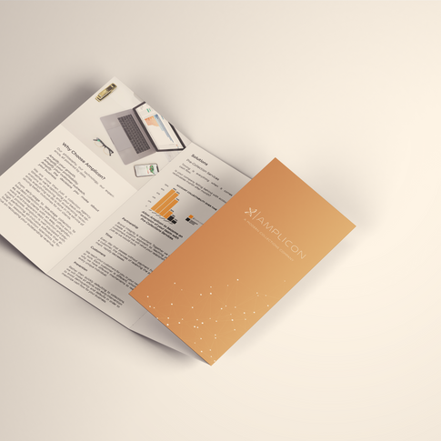 4 Panel Roll Fold Brochure Mockup.png