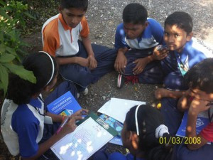 Month End Activities – October 2014