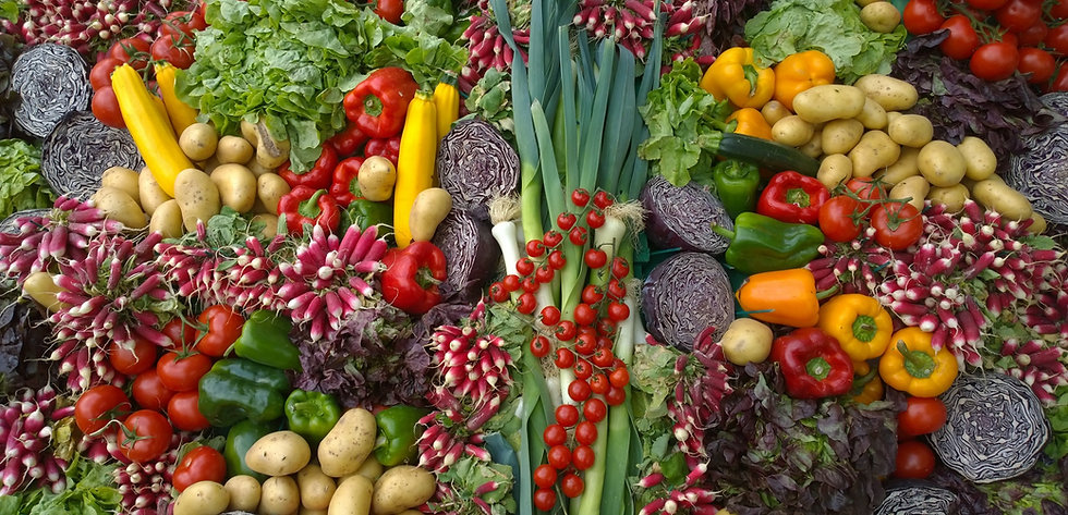 Mix%20of%20vegetables%20at%20the%20Flower%20Show%20in%20Chantilly_edited.jpg