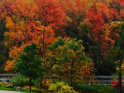 My Favorite Season of the year.... Autumn