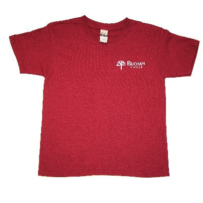 Buchan Gym T-Shirt (Grades 1 - 6)