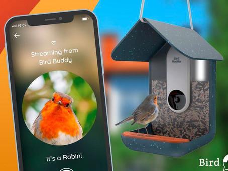 Slovenski start-up leta 2021 postalo podjetje Bird Buddy d.o.o.