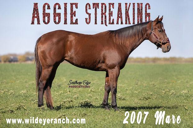 Aggie Streaking - 1.jpg