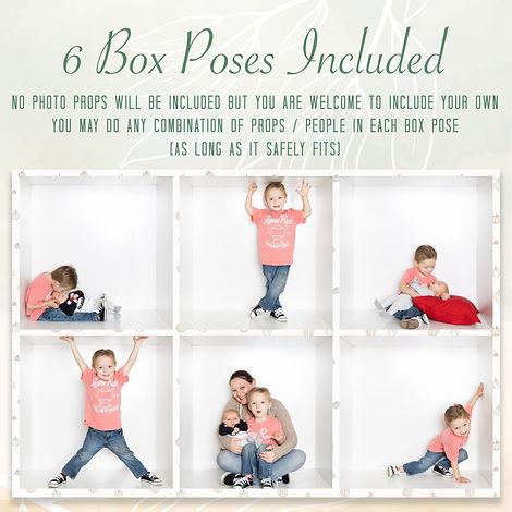 Box Pose Layout.jpg