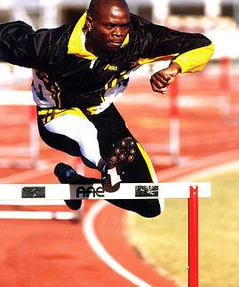 zig+hurdle.jpg