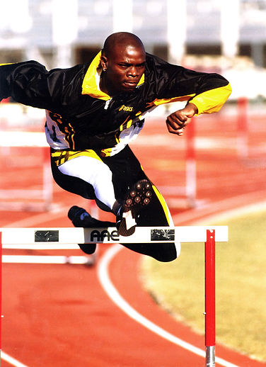 zig hurdle.jpg