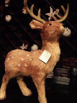 Reindeer at Christmas