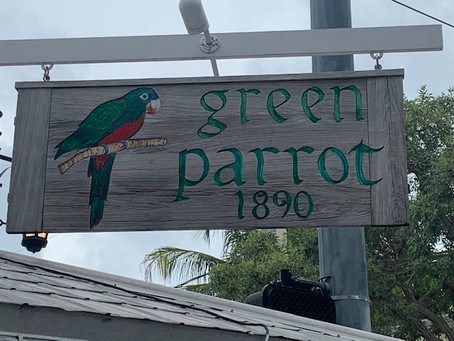 Green Parrot and Ryder.