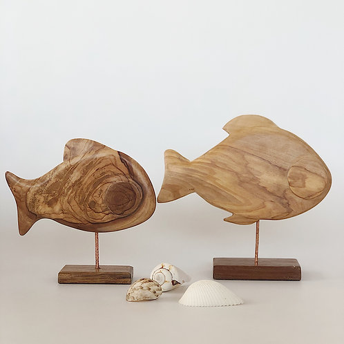 Balık Ponza Taşı
