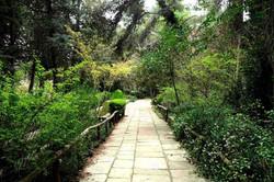 Μονοπάτι στον κήπο
