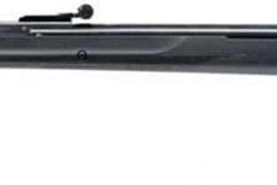 Ruger Air Scout 4.5mm