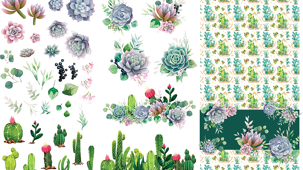 Dixie Belle Transfer Cacti and Succulents