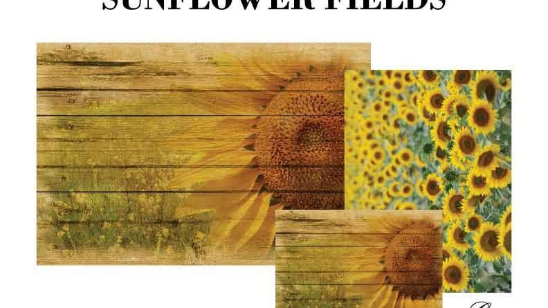 Sunflower Fields Decoupage Pack