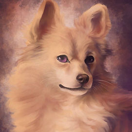 portree koerast
