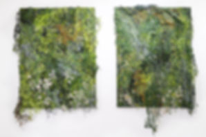 Overgrowth Series (2018)